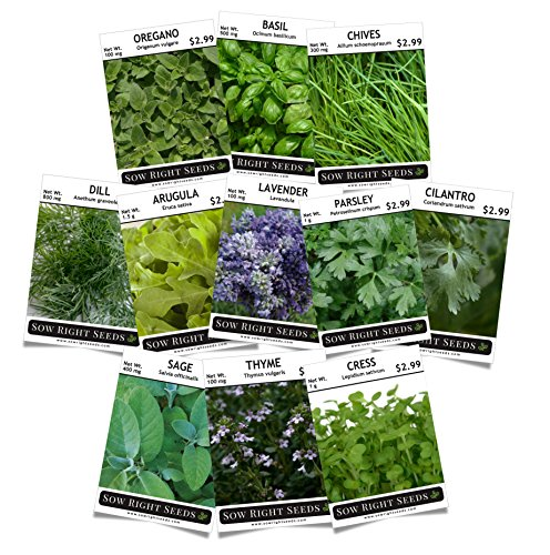 Sow Right Seeds - Herb Garden Seed Collection - Arugula, Basil, Chives, Cilantro, Cress, Dill, Lavender, Oregano, Parsley, Sage & Thyme; Non GMO Heirloom Seeds with Full Instructions for Planting (Basil Seeds Heirloom)