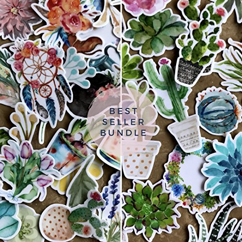 Watercolor Flower, Cactus and Succulent Plants Stickers for Your Laptop, Scrapbook, Daily Planner and Kids Craft by Navy Peony (65 Pieces) by Navy Peony