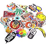 Xpassion Car Stickers Decals Pack 100 Pieces Bumper Stickers