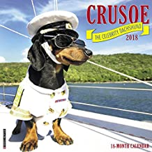2018 Crusoe the Celebrity Dachshund Wall Calendar