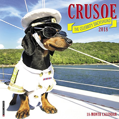 Crusoe the Celebrity Dachshund 2018 Calendar ()