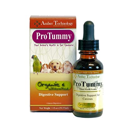 Amber Tech ProTummy 1oz. (Formerly Tummy Trouble 1oz.) For Vomiting, Diarrhea and Gas