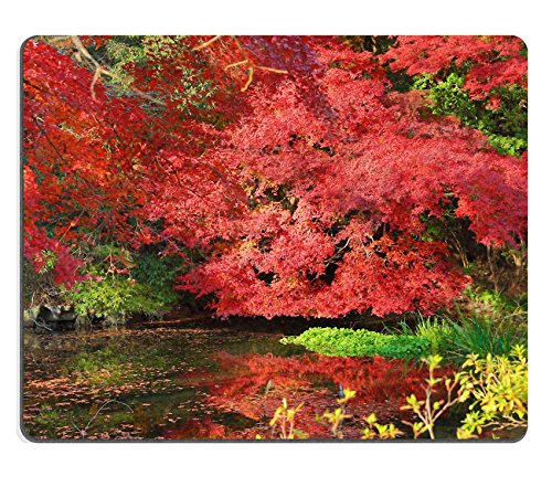 MSD Natural Rubber Mousepad Fall Autumn at Yasehieizanguchi IMAGE 35614613 (Ryoanji Temple Kyoto Japan)