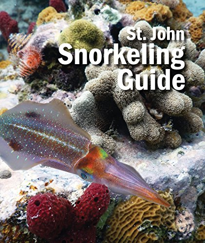st-john-snorkeling-guide-2nd-edition