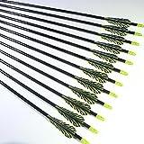 "Shiny Black® TigerStreak 26"" Premium Fiberglass Hunting / Target Practice Arrows with Replaceable Screw-In Stainless Steel Field Point (1 Dozen)"