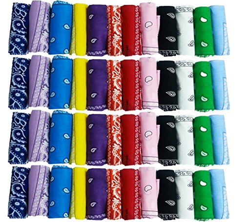 Paisley Bandanas Assorted Colors Pack