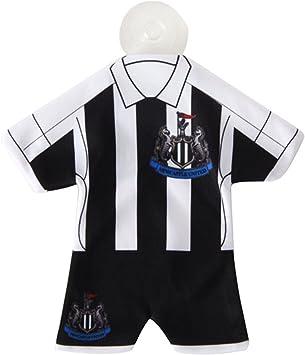 Newcastle Kit Car Hanger