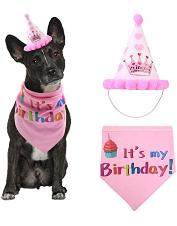 68a315e2 TEEPAO Dog Birthday Hat and Bandana Girl Set - AOLVO Adjustable Pet Dog  Happy Birthday Hat