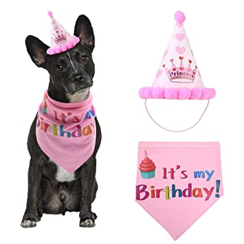 Dog Birthday Hat And Bandana Girl Set