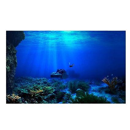 Acuario Fondo HD Submarino Coral Reef Fotos Papel Pintado Acuario Pescado MAR de Pared XXL Submarino Underwater Mundo decoración de Pared