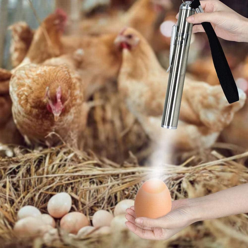 Xiangyin Egg Candler,LED Light Egg Candler Tester,Incubadora De L/ámpara De Vela Ligera con Pilas para Pollos,Patos,P/ájaros,Huevos para Incubar