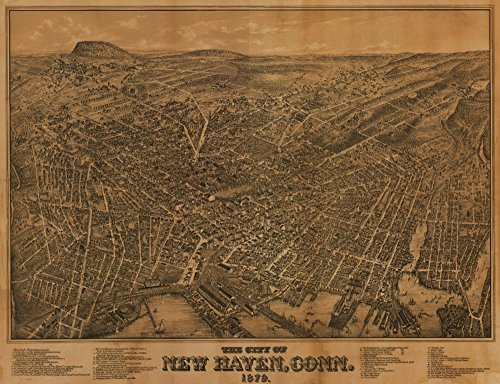 New Haven, Connecticut - (1879) - Panoramic Map (12x18 Art Print, Wall Decor Travel Poster)
