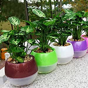 Mkono 5 Pack Self Watering Planter Plastic Flower Pot 4 Inch (Mixed Colors)