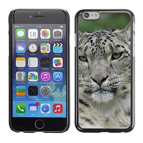 """Premio Sottile Slim Cassa Custodia Case Cover Shell // V00003960 deux léopard des neiges // Apple iPhone 6 6S 6G 4.7"""""""