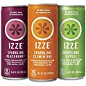 24-Pack Izze Sparkling Juice Variety Pack, 8.4 Ounce