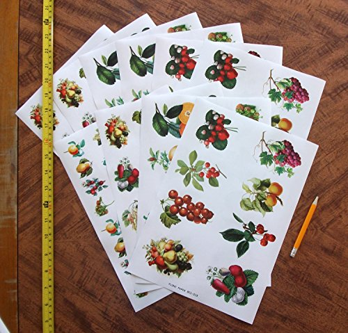 Decoupage Paper Pack 10sheets A4 8 Quot X12 Quot Fruit And