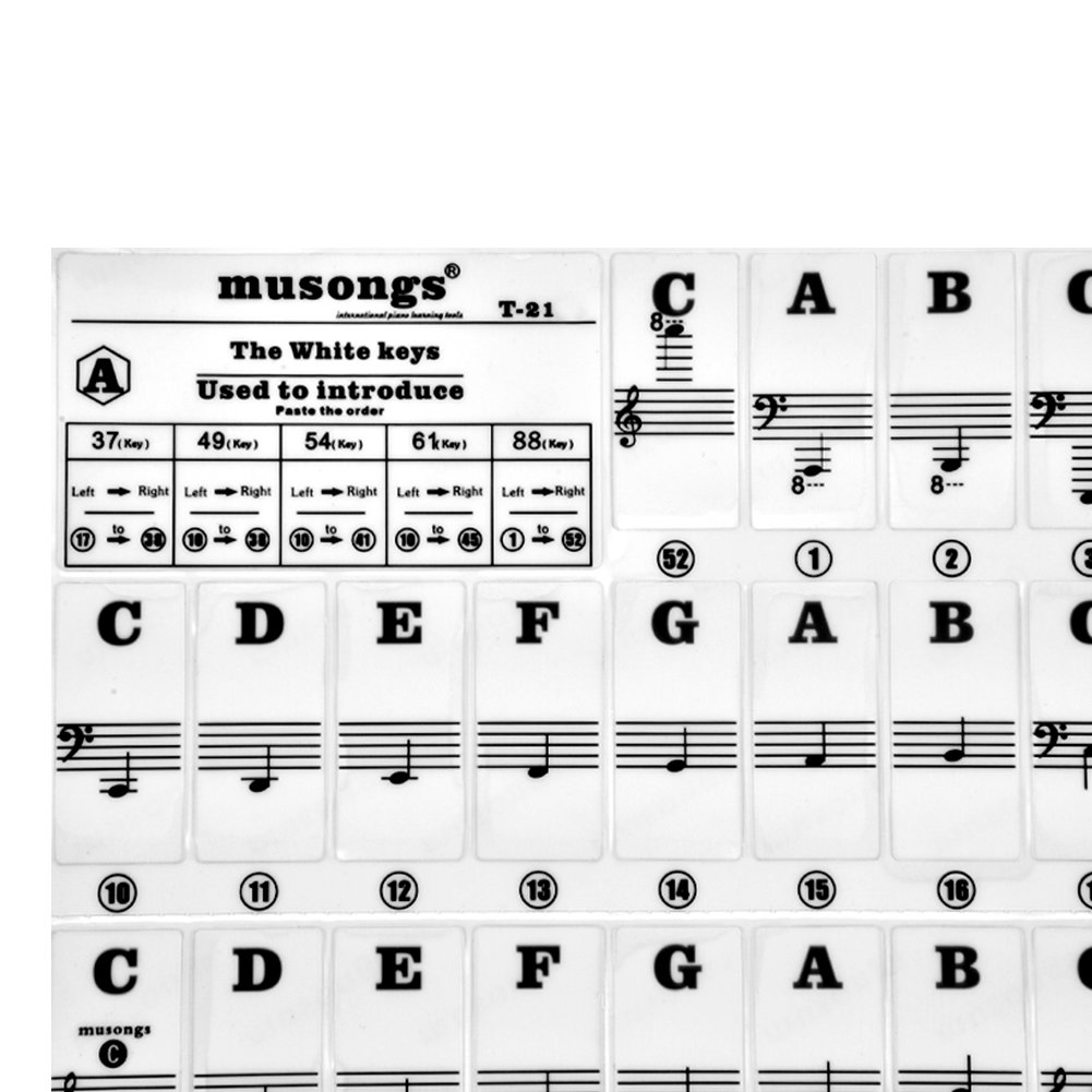 Dilwe Piano Keys Sticker Black + White Transparent Removable Piano Keyboard Stickers for 61//88 Key Pianos Transparent Removable Piano KeyBoard Stickers for 61//88 Key Pianos