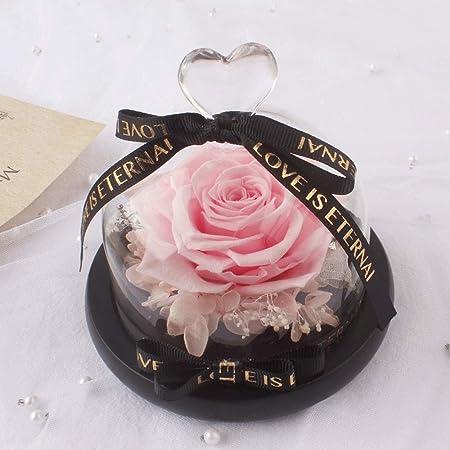 Rosas en una Caja de Regalo Rosa conservada en cúpula de ...