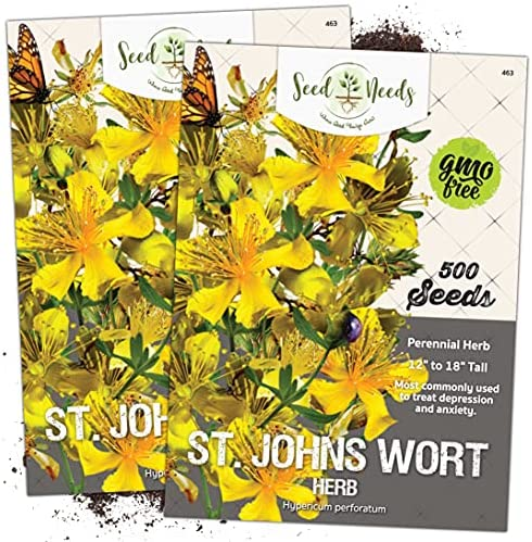 1  St John/'s Wort Hypericum Plant FREE SHIPPING now on sale 19.98