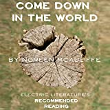 Bargain Audio Book - Come Down in the World
