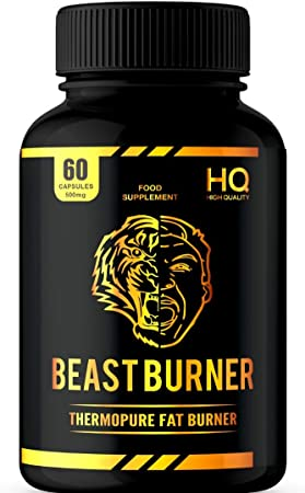 thermo beast fat burner review