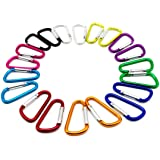 "20PCS 2.0""/5CM Aluminum D Ring Carabiner Clip,Lightweight Durable Small Caribeaner Keychain Hook For Home,Outdoor,Camping,Rv,Hiking,Travling,Fishing and Keychain"