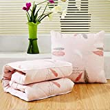 HOMEE Antarctic Person Vehicle Pillow Quilt Dual-Use Pure Cotton Fold Small Blanket Office Sofa Bed on the Lumbar Support Rest is the Dream of Stars,Toner Yu Mood,4545