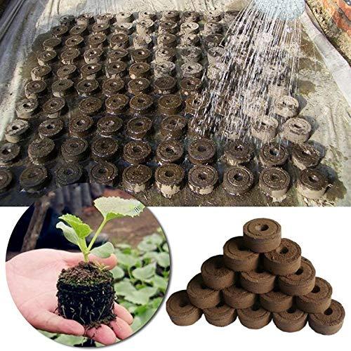 Matthew00Felix 5pcs 30mm Peat Pellets de Semillas de Partida Tapones de paletas de siembra de pl/ántulas Bloque de Suelo