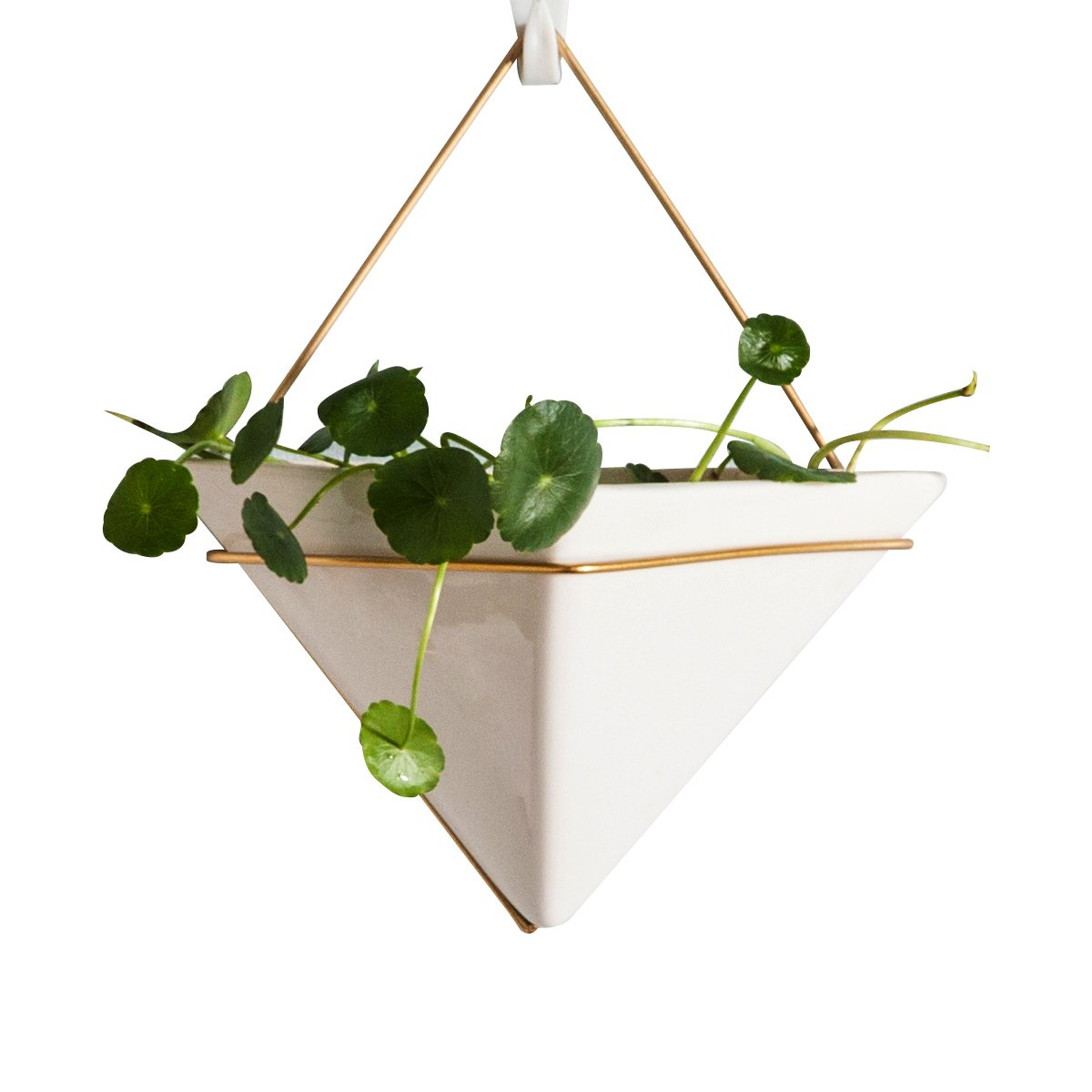 Hanging Planter For Indoor Plants, Geometric Wall Decorative Flower Pot