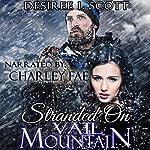 Stranded on Vail Mountain | Desiree L. Scott
