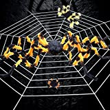 JMsDream Black Hairy Spider Multicolored Spider Spider Web for Halloween Haunt Decortor Best Halloween Decoration