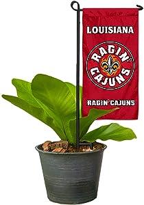 College Flags & Banners Co. Louisiana Lafayette Ragin Cajuns Mini Garden and Flower Pot Flag Topper