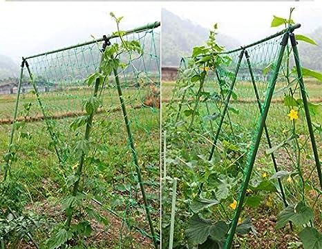 Mitefu Multi-purpose PE Plant Trellis Net Heavy-duty Garden Netting Poultry Breeding Netting,6 Stranded,Netting Size:W6xL30,Mesh size:1.18x1.18