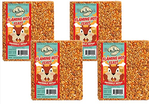 - 4-Pack of Mr Bird's Flaming Hot Feast Large Wild Bird Seed Block 1 lb. 9 oz.