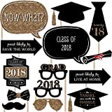 Graduation Party - Gold - 2018 Grad Photo Booth Props Kit - 20 Count