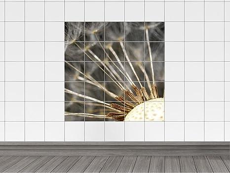 Piastrelle adesivo piastrelle immagine dente in primo piano x