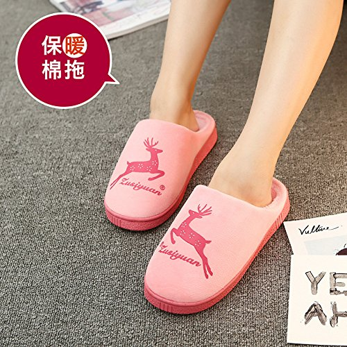 caldi rosa indoor inverno e 40 donne cotone pantofole pantofole di giovane in Il la e anti inverno home fabbrica autunno slittamento in grazioso gli uomini le P4wA0