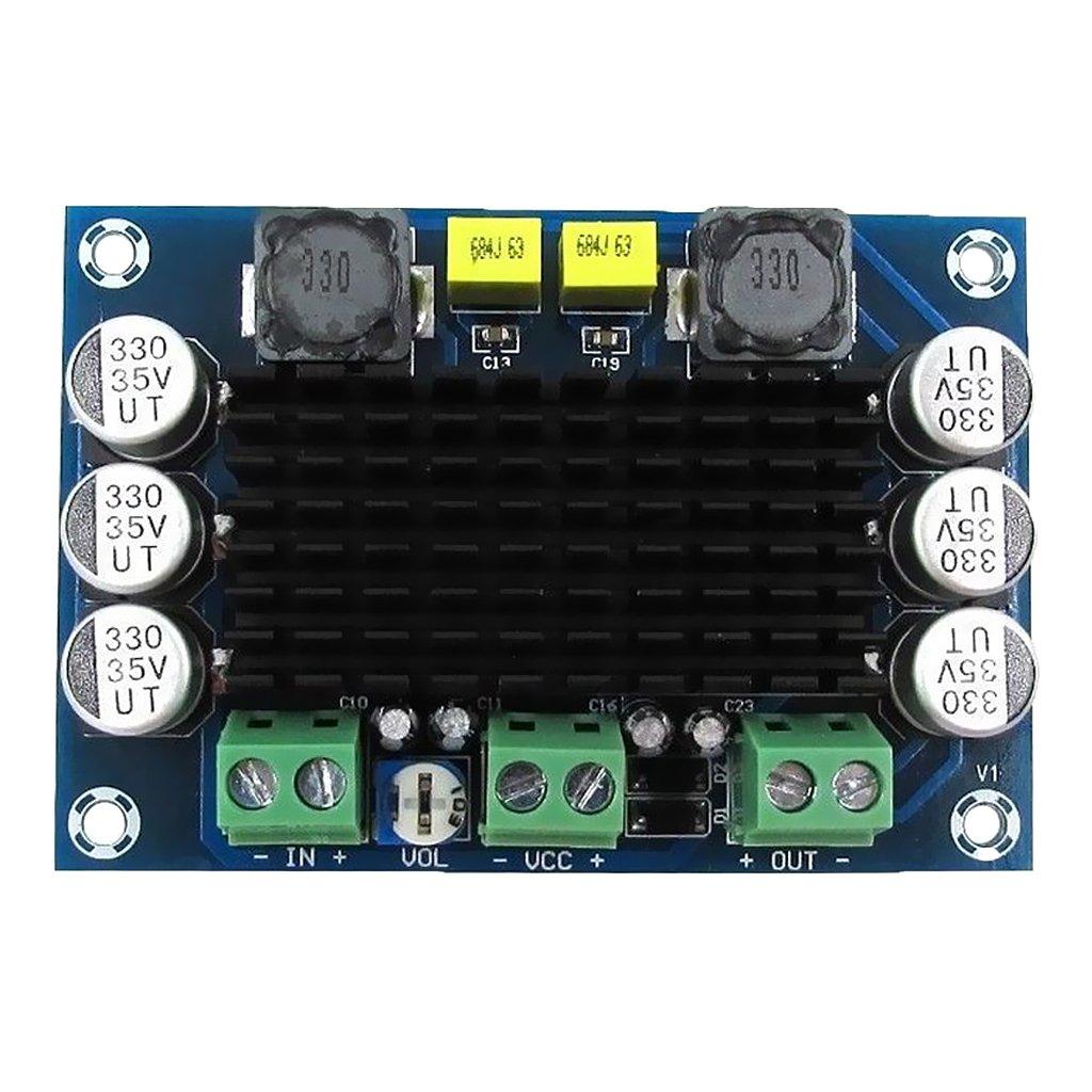 LOVIVER TPA3116D2 Mono Kanal 100W Digital Audio Stereo Endstufe Platine