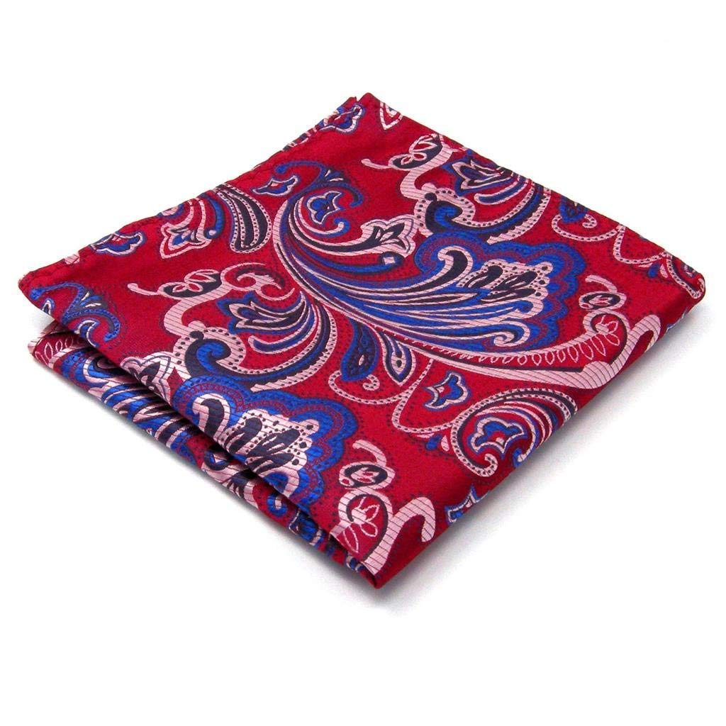 Shlax& Wing Pattern Red Blue Pink Handkerchief Mens Ties Silk Hanky MH23