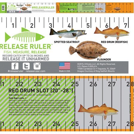 Texas Inshore Slam Release Ruler Decal (Best Trout Fishing In Texas)