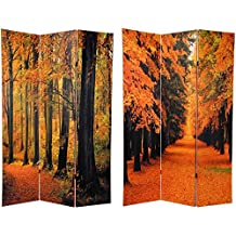 Oriental Furniture Largest Sized Nature and Outdoor Photographs, 6-Feet Double Photo Print Canvas Room Divider, Beautiful Autumn Leaves