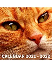 Calendar 2021-2022: Lessons From Ginger Cat May 2021 - July 2022 Square Photo Book Monthly Planner Mini Calendar With Inspirational Quotes