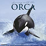 Journey with the Orca 2019 Calendar