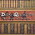 Don Quixote Audiobook by Miguel de Cervantes Narrated by Julian Reinoso
