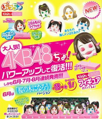 ぷっちょワールド第7弾 ぷっちょ×AKB48 Ver.1 フィギュアフルコンプリート 18体+シークレット1体 計19体セット