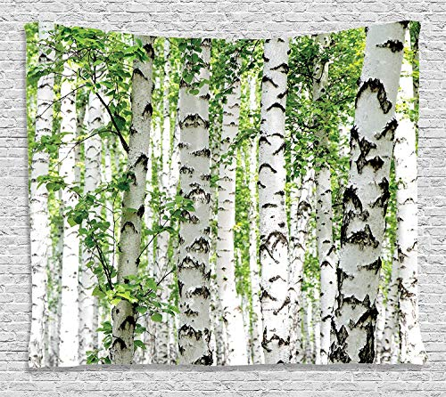 Forest Tapestry Wall Hanging, Birch Trees in the Forest Summertime Wildlife Nature Themed Decorating Picture, Bedroom Living Room Dorm Decor, 80 W X 60 L Inches, White Green
