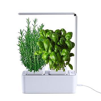 Smart Garden   Cultivez Vos Herbes Aromatiques   Potager Du0027Intérieur 100%  Bio
