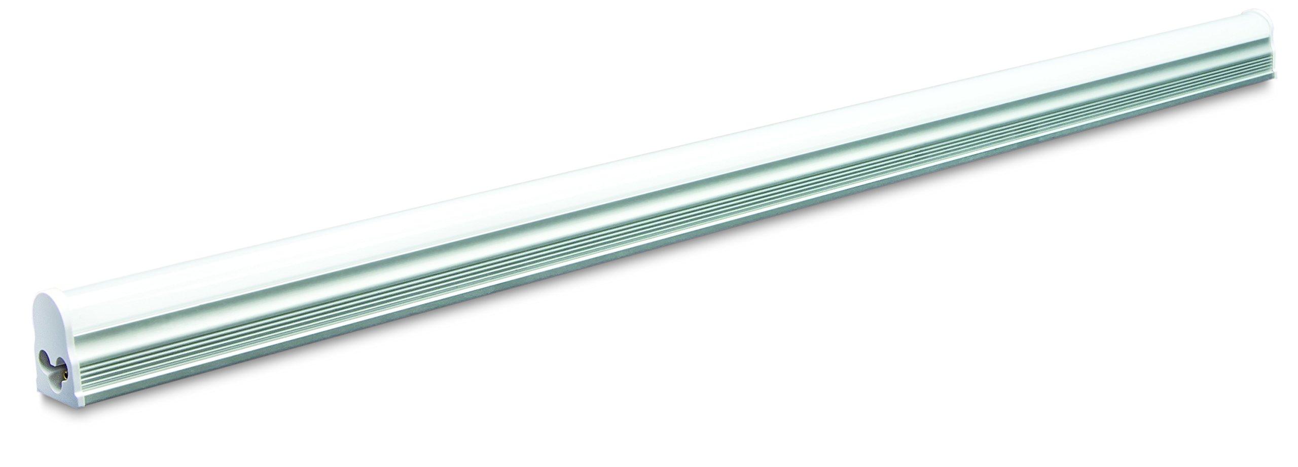 Forest Lighting T5N250 5000K 12W LED Integrated T5 Tube Light (20 Pack), 2' by Forest Lighting
