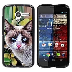 Estuche Cubierta Shell Smartphone estuche protector duro para el teléfono móvil Caso Motorola Moto X 1 1st GEN I XT1058 XT1053 XT1052 XT1056 XT1060 XT1055 / CECELL Phone case / / Thai