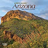 Arizona Wild & Scenic 2020 7 x 7 Inch Monthly Mini Wall Calendar, USA United States of America Southwest State Nature